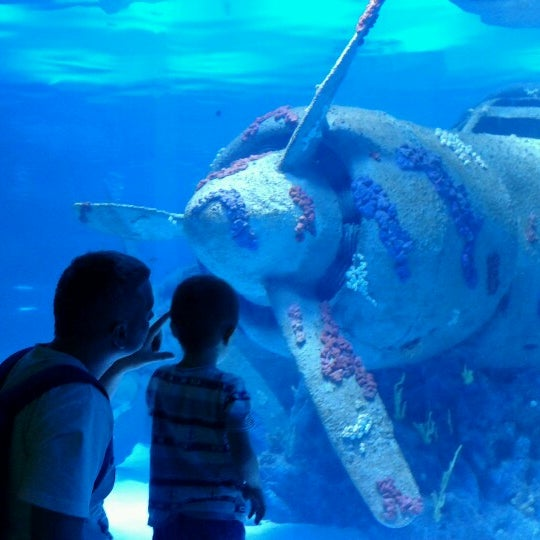 Das Foto wurde bei Antalya Aquarium von Denis F. am 9/3/2012 aufgenommen