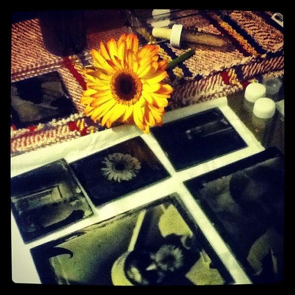 รูปภาพถ่ายที่ Museo Universitario del Chopo โดย Alexander U. เมื่อ 5/20/2012