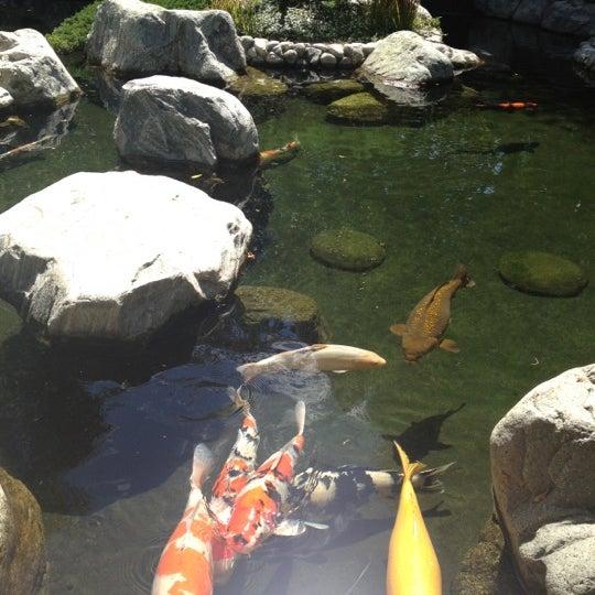 9/2/2012にMasha Y.がJapanese Friendship Gardenで撮った写真