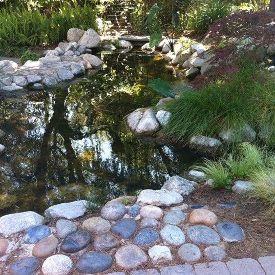 8/5/2012 tarihinde Roxana C.ziyaretçi tarafından Descanso Gardens'de çekilen fotoğraf