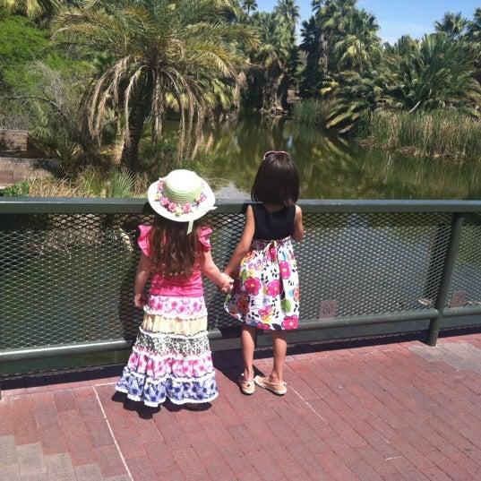 Снимок сделан в Phoenix Zoo пользователем Jenny 4/9/2012