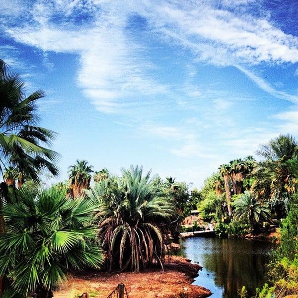 Снимок сделан в Phoenix Zoo пользователем Josh D. 9/9/2012