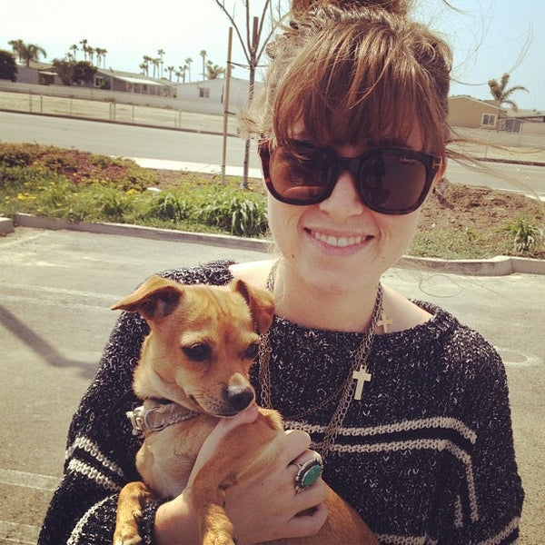 Photos at Orange County Humane Society - Pet Store