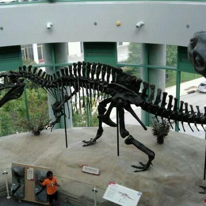 รูปภาพถ่ายที่ North Carolina Museum of History โดย Sierra L. เมื่อ 9/24/2011