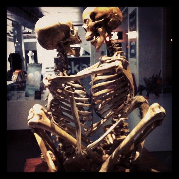 10/18/2011에 artemisrex님이 Museum of Sex에서 찍은 사진