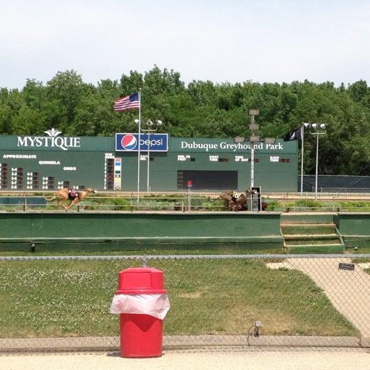 Mystique casino and dubuque greyhound park black oak casino owners