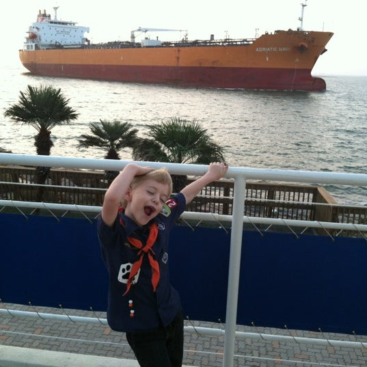 11/19/2011にShane A.がTexas State Aquariumで撮った写真
