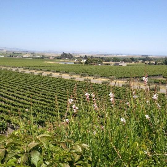 Das Foto wurde bei Gloria Ferrer Caves & Vineyards von Christina B. am 5/29/2012 aufgenommen