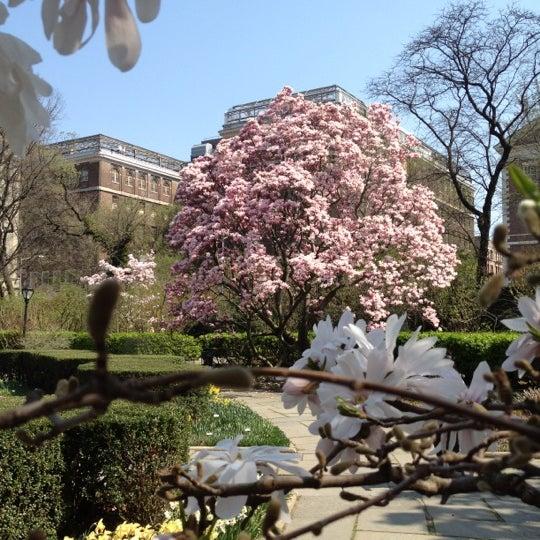 Foto scattata a Conservatory Garden da Lorena V. il 3/22/2012
