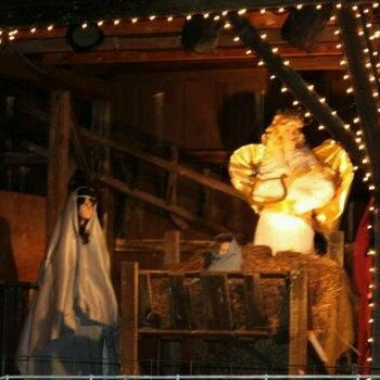 Overlys Country Christmas.Photos At Manger At Overly S Country Christmas Other Great