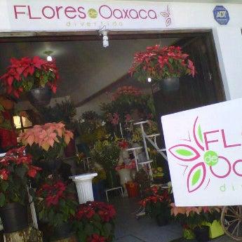 12/10/2011にMónica V.がFlorería Flores de Oaxacaで撮った写真