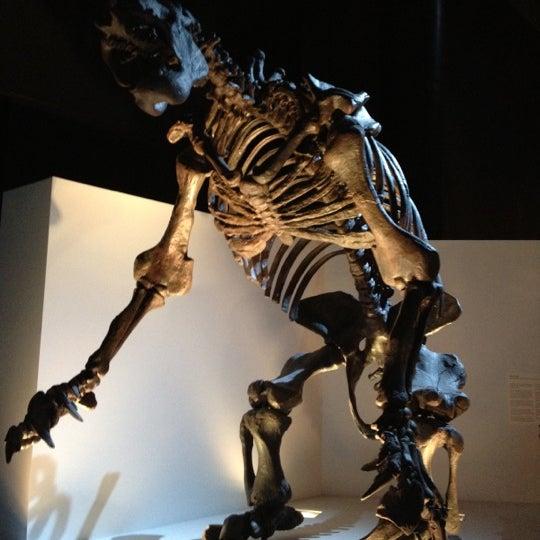 Foto scattata a Houston Museum of Natural Science da 😈darĸərтнanвlacĸ😈 il 6/6/2012