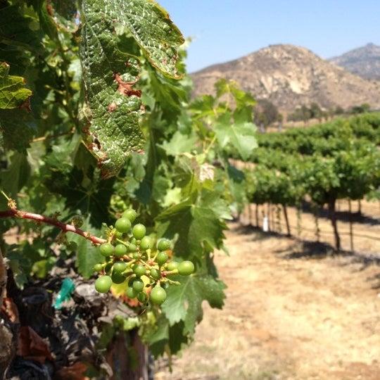 รูปภาพถ่ายที่ Orfila Vineyards and Winery โดย David L. เมื่อ 6/3/2012