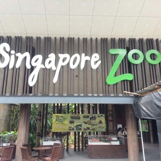 Foto tirada no(a) Singapore Zoo por Quimson L. em 7/18/2012