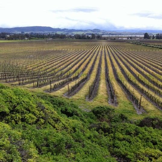 Das Foto wurde bei Gloria Ferrer Caves & Vineyards von Leigh F. am 3/26/2011 aufgenommen