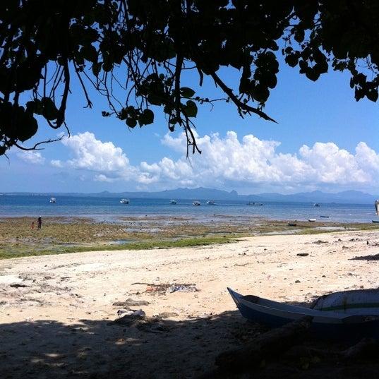 Pantai Kelapa Lima Kupang Ntt Indonesia