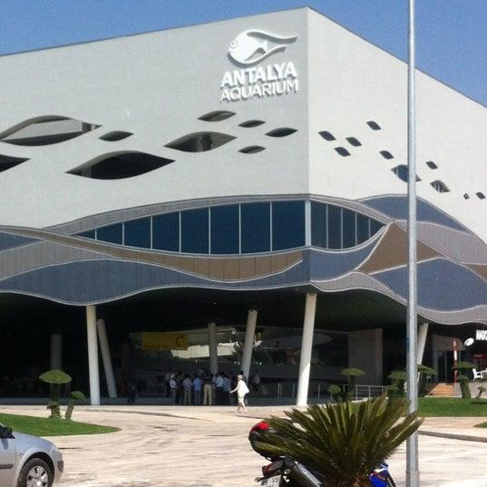 Das Foto wurde bei Antalya Aquarium von alpStar ★. am 9/8/2012 aufgenommen