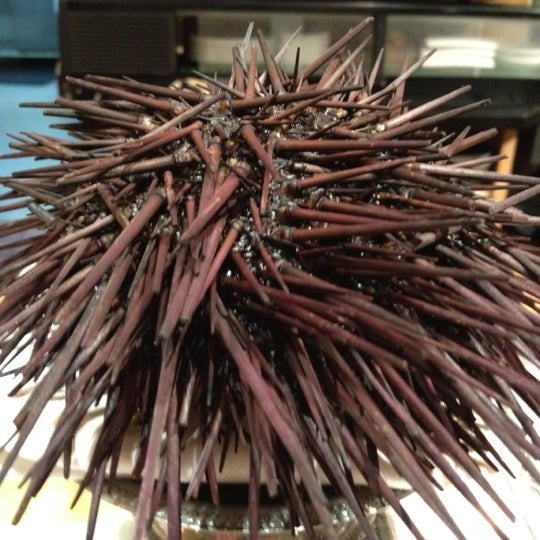 รูปภาพถ่ายที่ Sushi Tora โดย Jud V. เมื่อ 10/28/2011