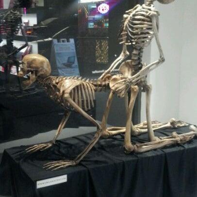 10/21/2011에 Jimmy W.님이 Museum of Sex에서 찍은 사진