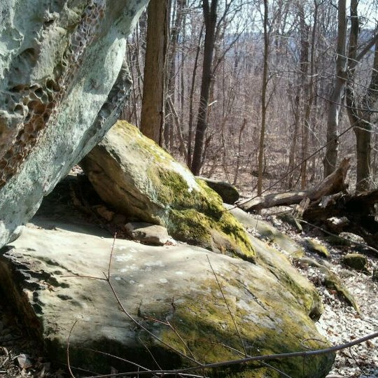 Trail In Hinckley