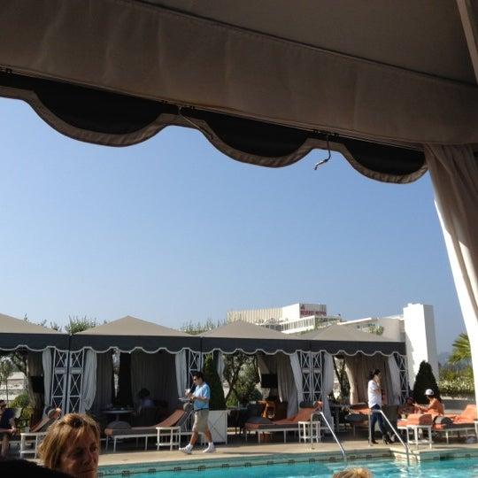 rooftop pool, lounge away.