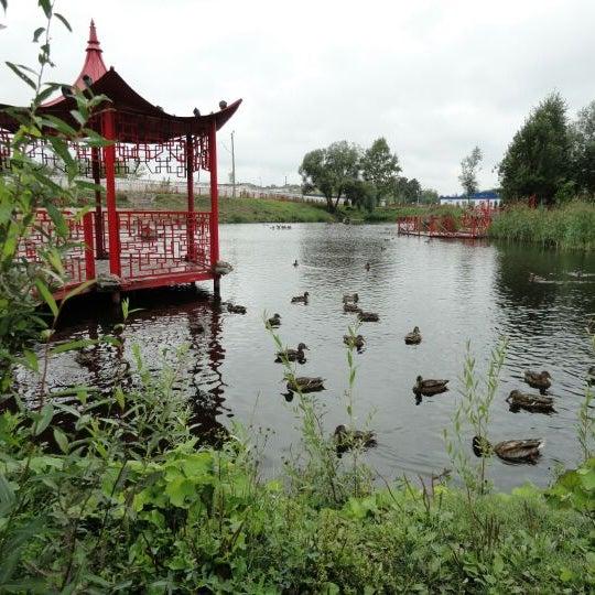 китайский парк тверь фото смотреть патология, которая