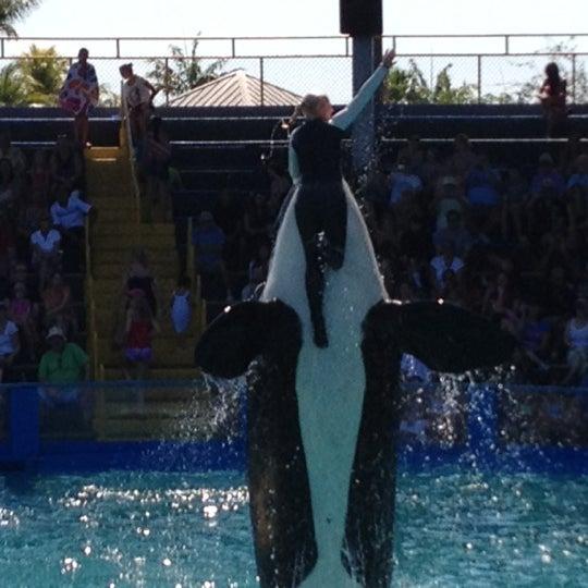 2/23/2012에 Robb C.님이 Miami Seaquarium에서 찍은 사진