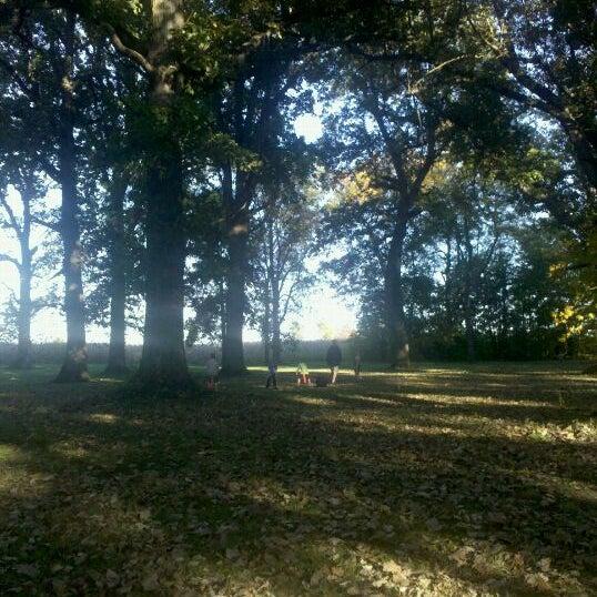 Photos At Biddle Memorial Park Park