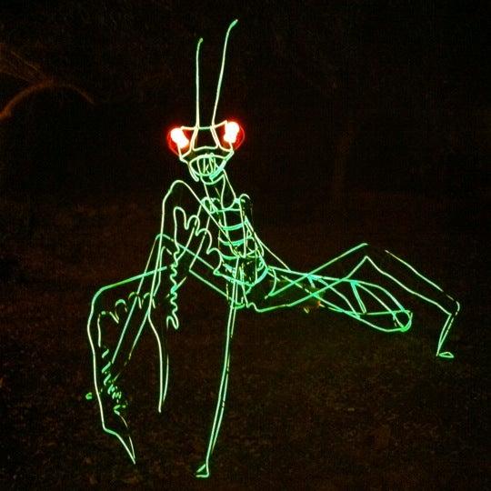 Снимок сделан в Phoenix Zoo пользователем Lucas S. 1/3/2012