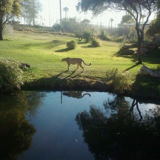 Снимок сделан в Phoenix Zoo пользователем Christa H. 1/21/2012