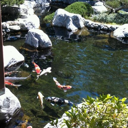 4/17/2012にDiedre M.がJapanese Friendship Gardenで撮った写真