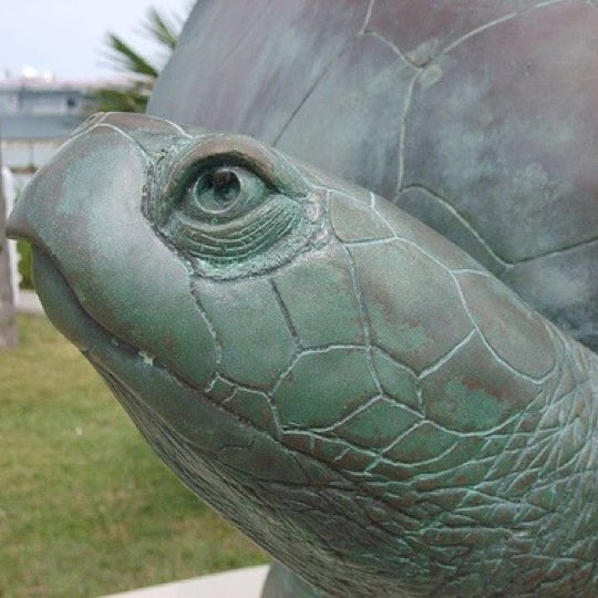 7/19/2011 tarihinde Matthew W.ziyaretçi tarafından Texas State Aquarium'de çekilen fotoğraf