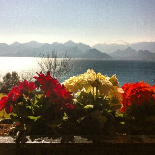 Photo prise au Tapas Cafe Bistro par Asli T. le4/18/2012