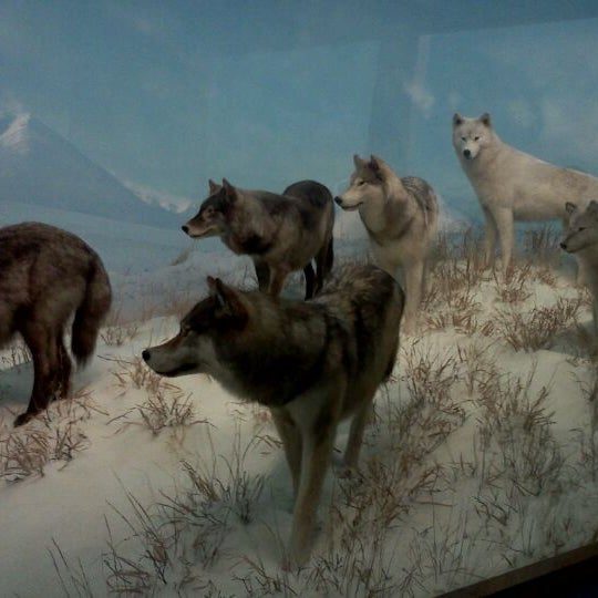 Photo prise au Denver Museum of Nature and Science par Angela R. le12/10/2011