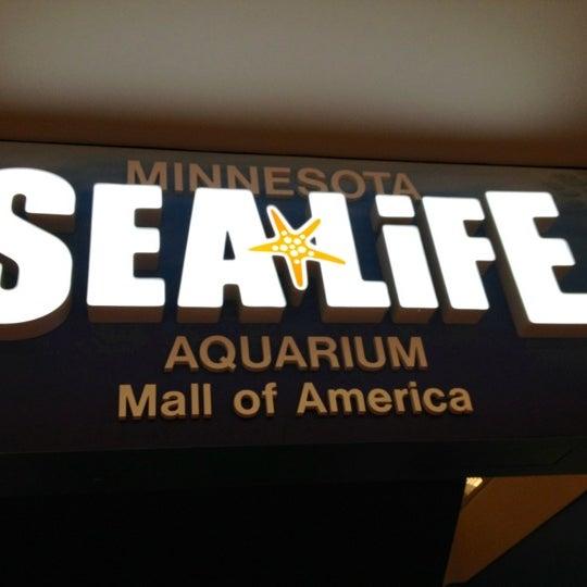 7/8/2012에 Jill T.님이 SEA LIFE Minnesota Aquarium에서 찍은 사진
