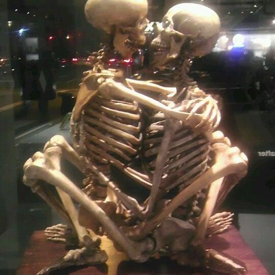 10/28/2011에 Brendez W.님이 Museum of Sex에서 찍은 사진