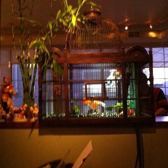 6/30/2011 tarihinde Namita D.ziyaretçi tarafından Koh Samui & The Monkey'de çekilen fotoğraf