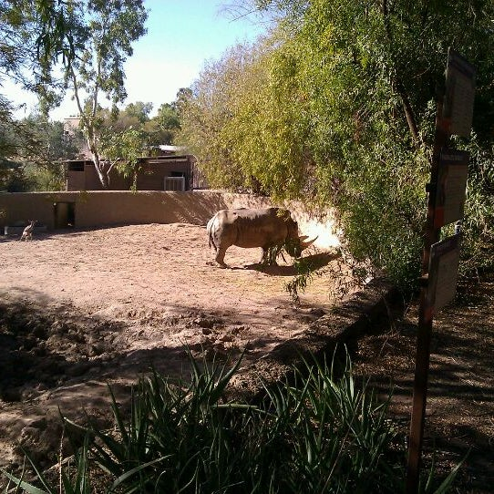 Foto tomada en Phoenix Zoo por Reggie A. el 12/29/2011