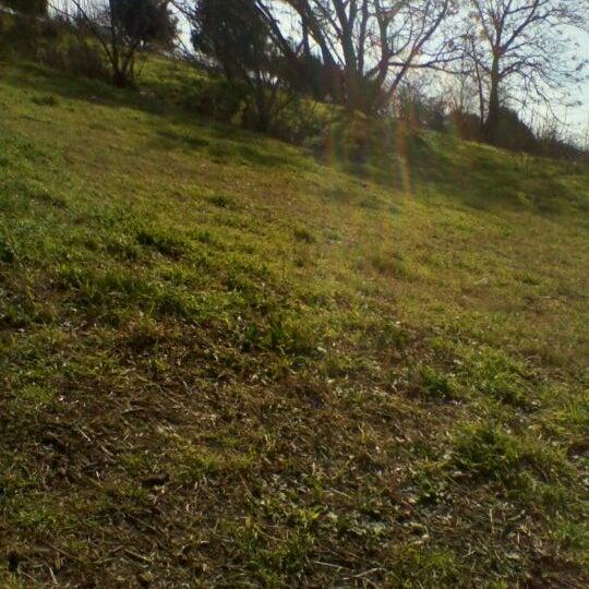 1/30/2012に-alice- K.がParco Regionale dell'Appia Anticaで撮った写真