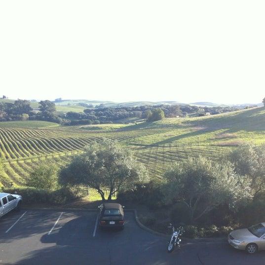Das Foto wurde bei Artesa Vineyards & Winery von Linda T. am 3/5/2012 aufgenommen
