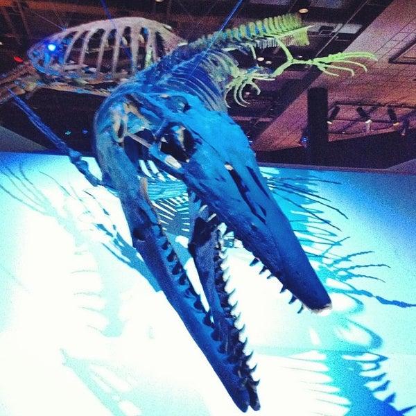 Foto scattata a Houston Museum of Natural Science da Lea M. il 7/8/2012