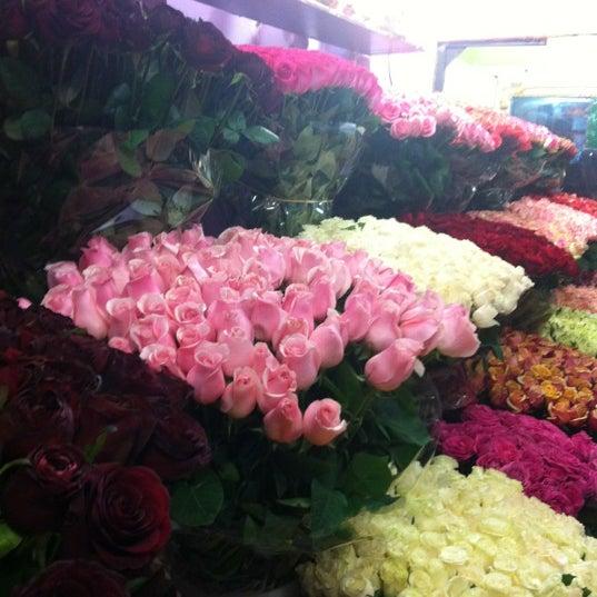 Цветочный магазин на киевской вокзале, купить букет багульник