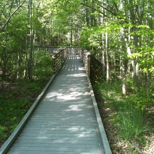 The Great Swamp Wildlife Reserve