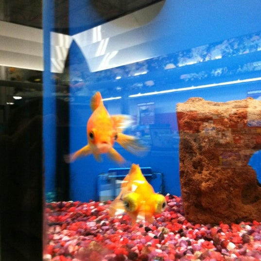 Photos at Petco - 1 tip from 289 visitors