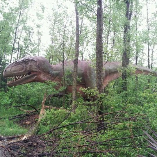 5/26/2012 tarihinde DAN C.ziyaretçi tarafından Minnesota Zoo'de çekilen fotoğraf