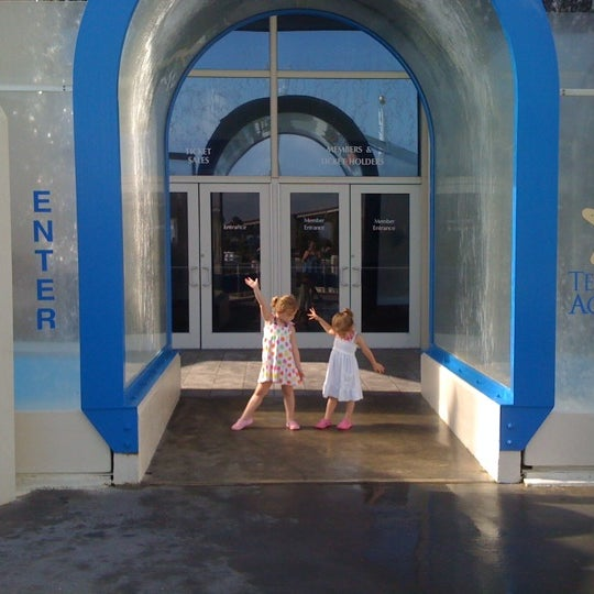 4/13/2012にSamantha A.がTexas State Aquariumで撮った写真
