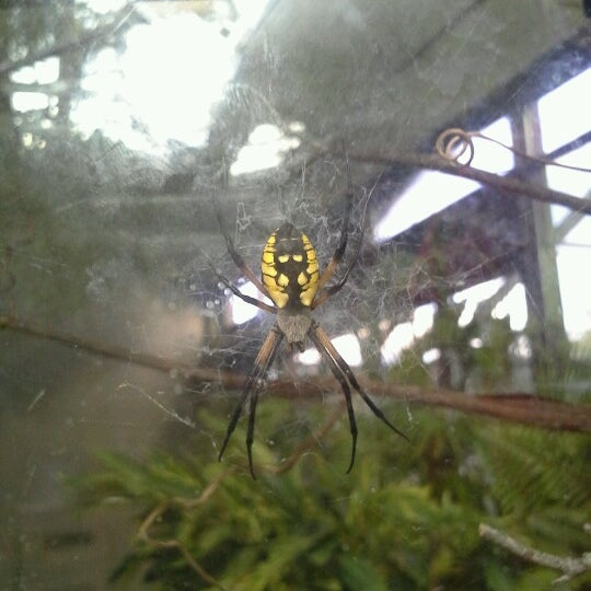 9/8/2012 tarihinde Dena M.ziyaretçi tarafından Minnesota Zoo'de çekilen fotoğraf