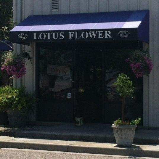 Photos At Lotus Flower Charleston Sc