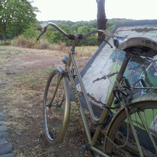 7/17/2012にMassimo C.がParco Regionale dell'Appia Anticaで撮った写真