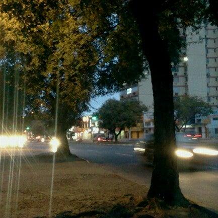 Photos At Avenida General Flores Da Cunha Road